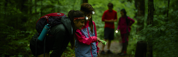 Equipped with headlamps, a family goes on a night hike with a naturalist.