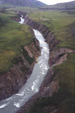 Lower Firth River Canyon
