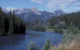 Photo of the Bow river and railway near the Christensen site.