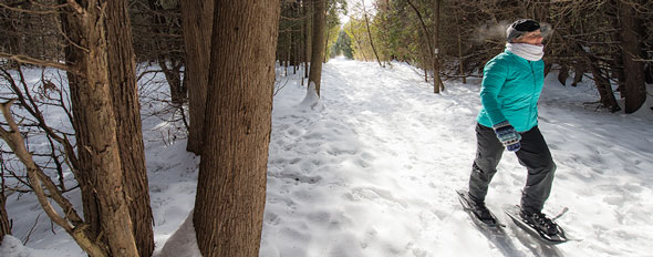 winter hikes at the rouge