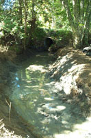 Culvert before removal
