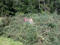 Volunteers stand by a pile of invasive plants they helped remove