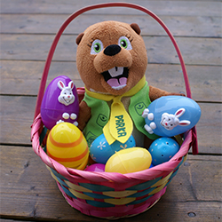 Easter basket with eggs and Parka stuffy inside