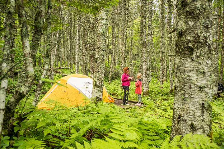 A family camping on Île du Havre, in the boreal forest. Mingan Archipelago National Park Reserve