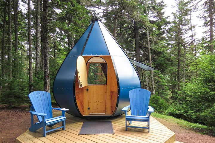 An Ôasis in the forest of Fundy National Park.