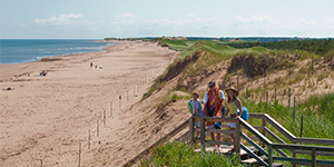 Visitors using the authorized beach-access walkway at Shaws Beach.