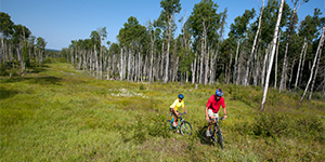 Mountain bikes on Waskesiu Hills.