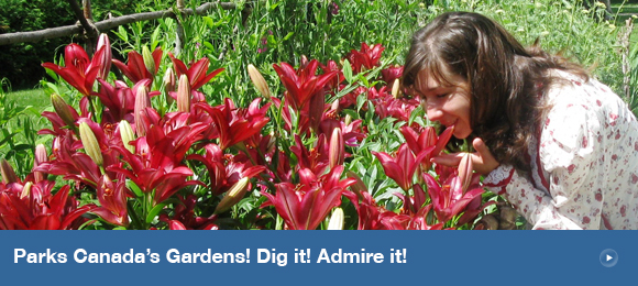 Parks Canada's Gardens! Dig it! Admire it!