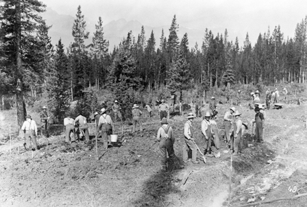 Internees clear the way for the road to Lake Louise in 1915.