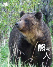 Chinois traditionnel - Les ours et les humains