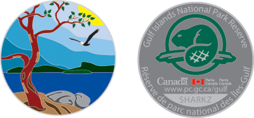 Limited edition centennial geocoin