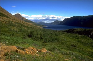 Tablelands et l'étang Trout River, PNGM