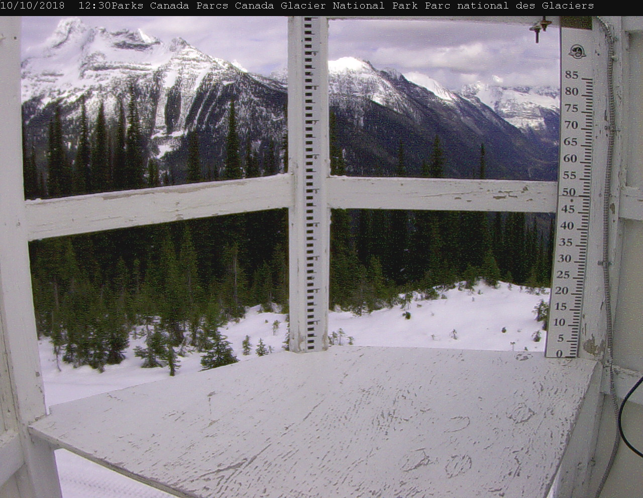 Image of snow board in Glacier National Park, Canada.  Snow board captures daily snowfall. Image is updated every 30 minutes. Snow board is located at 1910 m in the west end of the park looking east