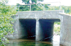 Small bridge over Dickson Brook