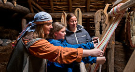 Textile Art of the Viking Age