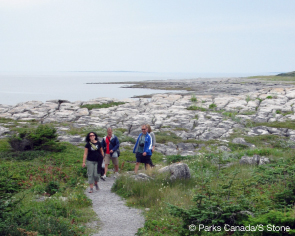 Tuckamore on the Coastal Trail. © Parks Canada/S. Stone