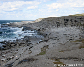 Coastal views on the Point Riche Trail. © Parks Canada/S. Stone