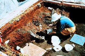 The archaeological dig at Port Au Choix National Historic Site