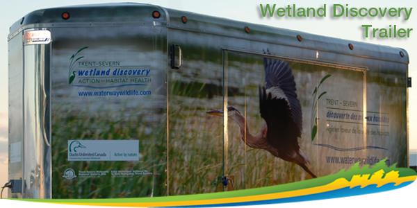 Wetland Discovery Trailer