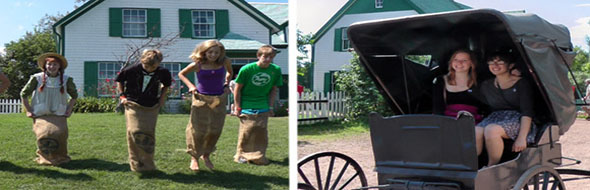Green Gables Activities