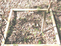 Monitoring site of vegetation unprotected from white-tailed deer without exclosures