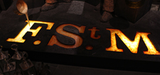 letters FSTM, Site logo