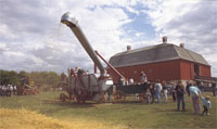 Threshing of the grain using old threshing machine