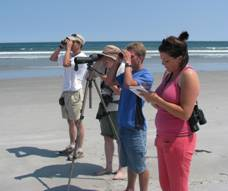 Photo of Volunteers observing Piping Plovers