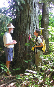 Landowner participating in an ecological survey while standing by a large Shagbark Hickory tree