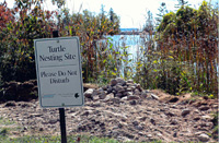 Turtle nesting protection sign