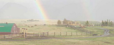 picture of ranch barn with rainbow in backgorund