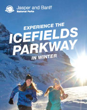 Experience the Icefields Parkway in Winter