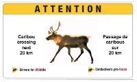 Caribou Crossing Sign, Jasper National Park