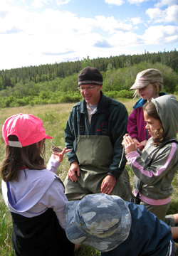 Bird banding with children in Jasper National Park