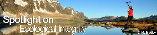 Spotlight on Ecological Integrity