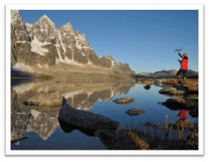 Monitoring caribou in the Tonquin Valley