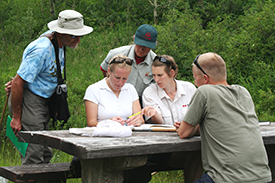 Volunteers and staff identify a butterfly