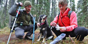Bear Scat Seekers Volunteer Program