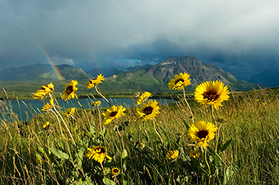 Waterton Lakes National Park © S. Harrington