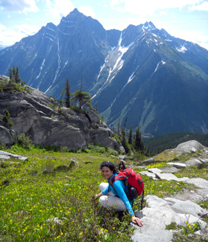 Hermit Trail with mountain vistas and glacier lilies