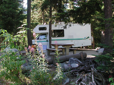 Campsite among the fireweed flowers