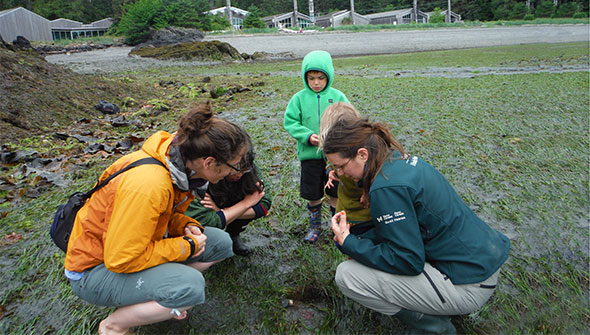A Parks Canada interpreter helps a group of visitors explore the shoreline between the tides