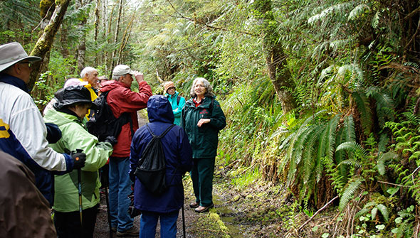 A Parks Canada interpreter leads a group on a guided walk through a temperate rainforest