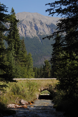 Nixon culvert, before restoration © Parks Canada