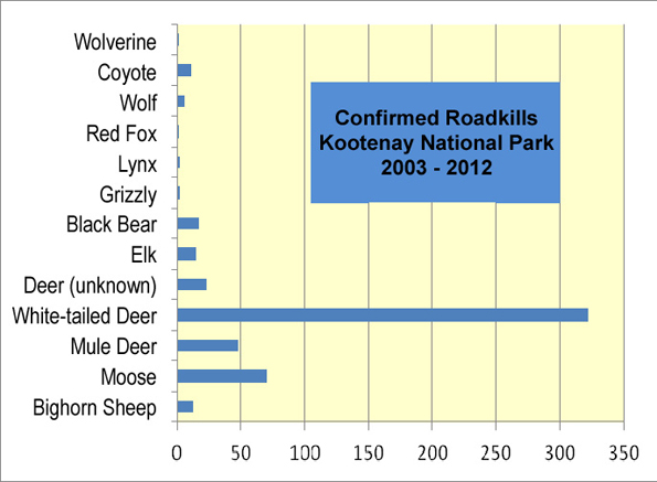 Confirmed Roadkills in Kootenay National Park 2003-2012