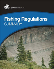 Fishing Regulations Summary
