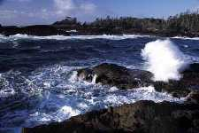 Ocean swell crashes on the rocks
