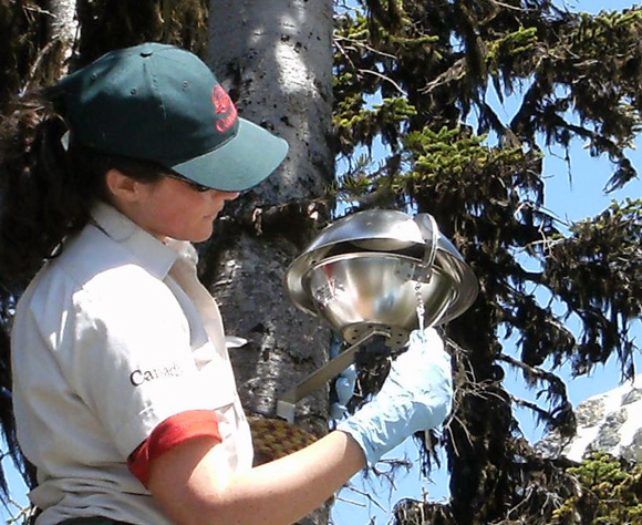 Using passive air samplers to help identify the source of DDT in alpine lakes