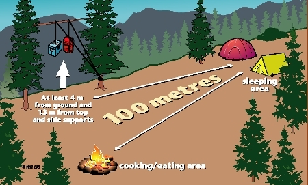 A graphic showing a campsite set up with cooking, eating and food storage areas at least 100 metres from your tent