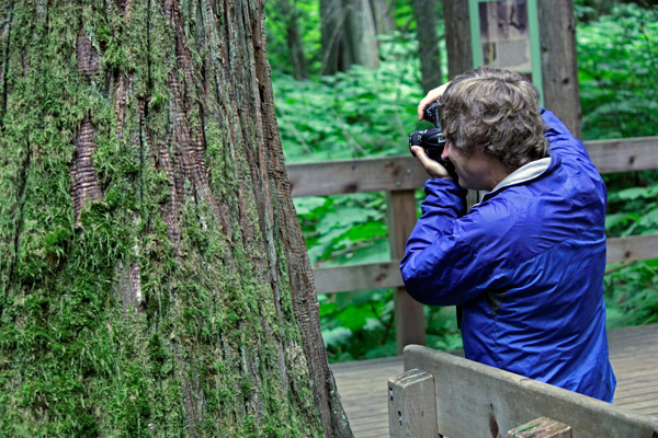 Photo of an artist at work in Mount Revelstoke National Park